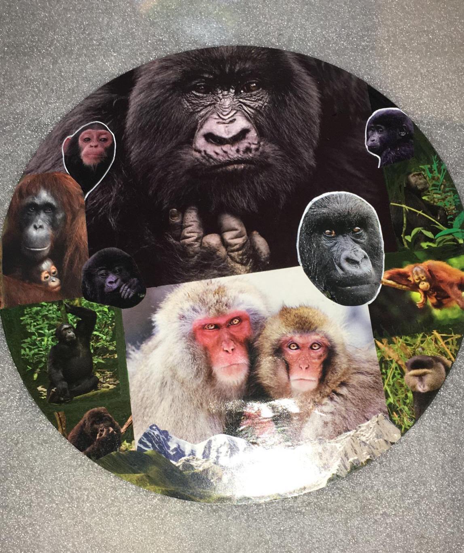 Chantal - Bijoux, collages sur vinyles
